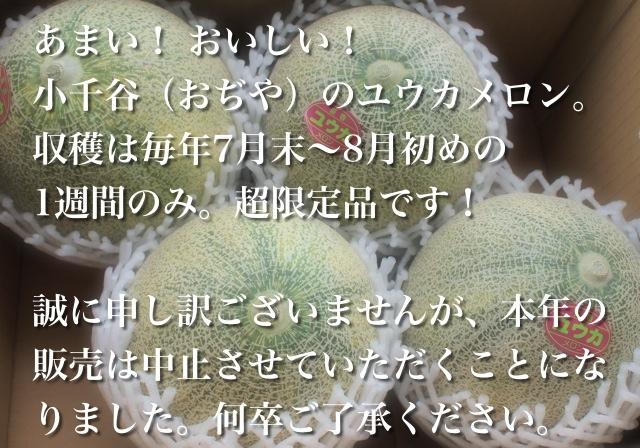 あまい! おいしい! 小千谷(おぢや)のユウカメロン。収穫は毎年7月末から8月初めの1週間のみ。「超限定品」です!